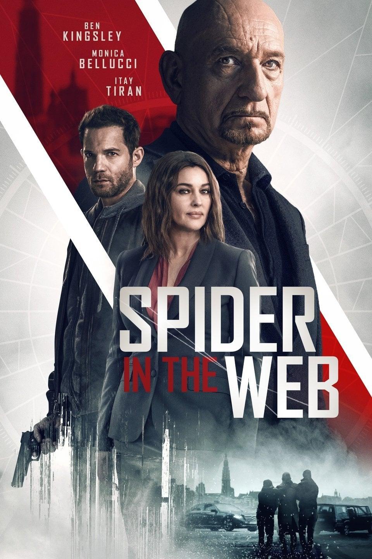 Spider in the Web (2019) สไปเดอร์ อิน เดอะเว็บ